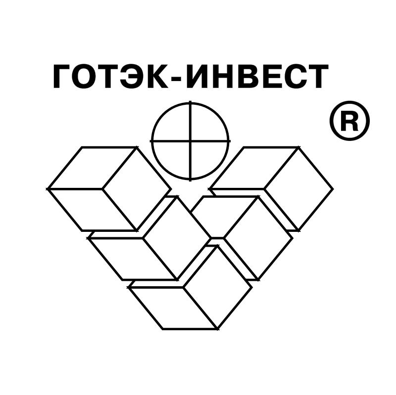 Gotek Invest vector