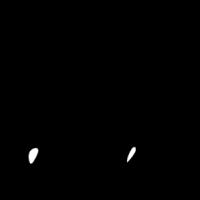 Horse Contacts vector