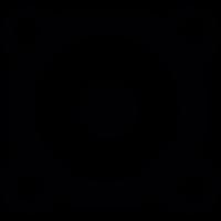 Amplifier vector
