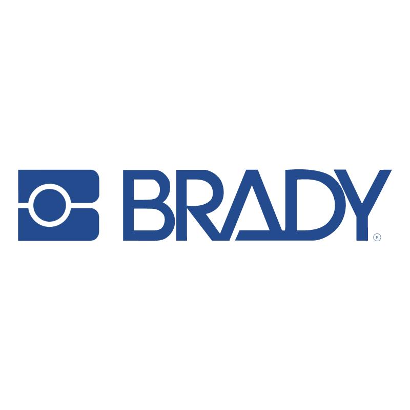 Brady vector