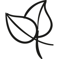 Two Plant Leaves vector