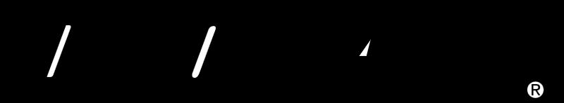Duo Fast vector logo