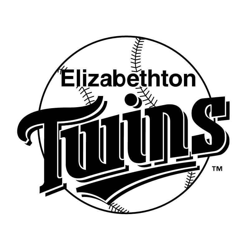 Elizabethton Twins vector