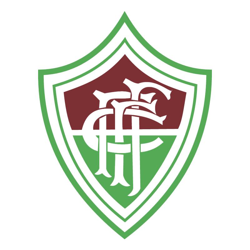 Fluminense Futebol Clube de Fortaleza CE vector