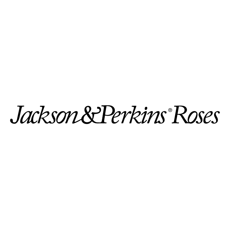 Jackson & Perkins Roses vector