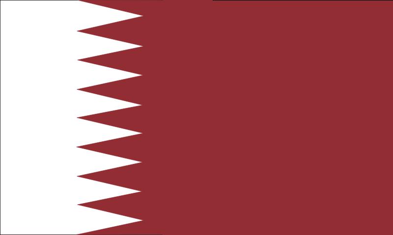 qatar1 vector