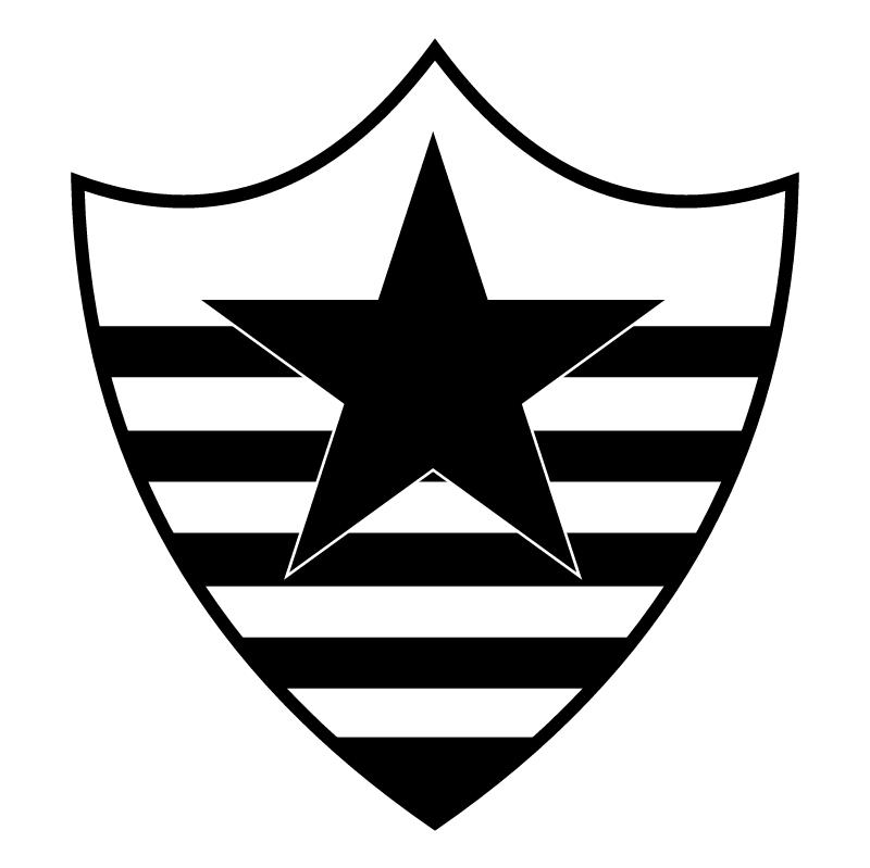 Botafogo Esporte Clube de Teresina PI vector