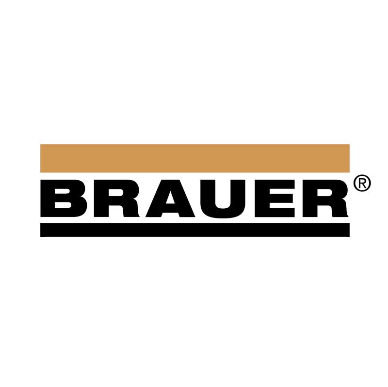 Brauer vector