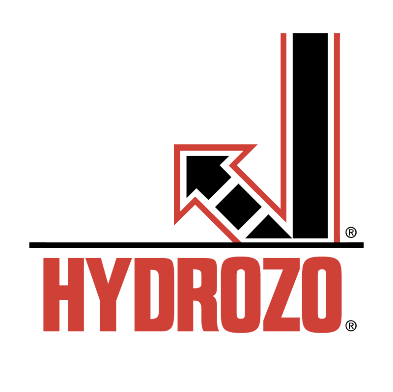 Hydrozo vector