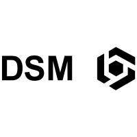 DSM vector
