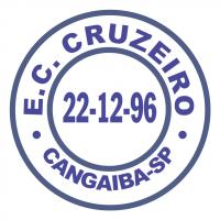 Esporte Clube Cruzeiro de S o Paulo SP vector