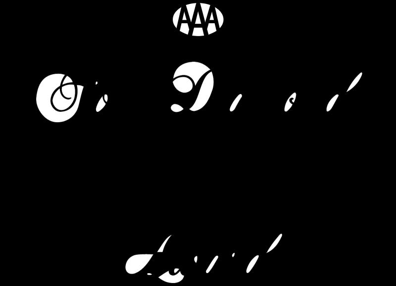 AAA 4 Diamond Service vector logo