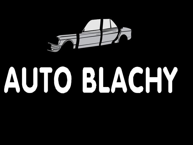 auto blachy vector