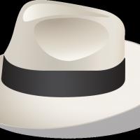 Sinatra vector
