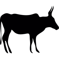 Mammal animal black silhouette vector