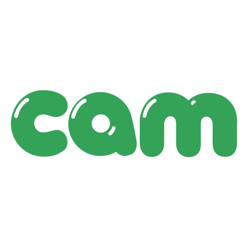 Cam vector