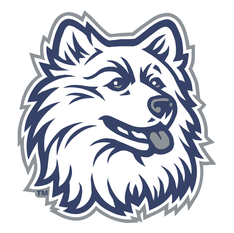 Connecticut Huskies vector