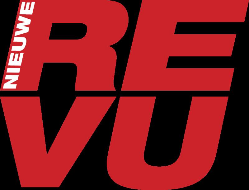 Revu vector