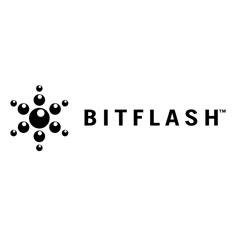 BitFlash 43453 vector