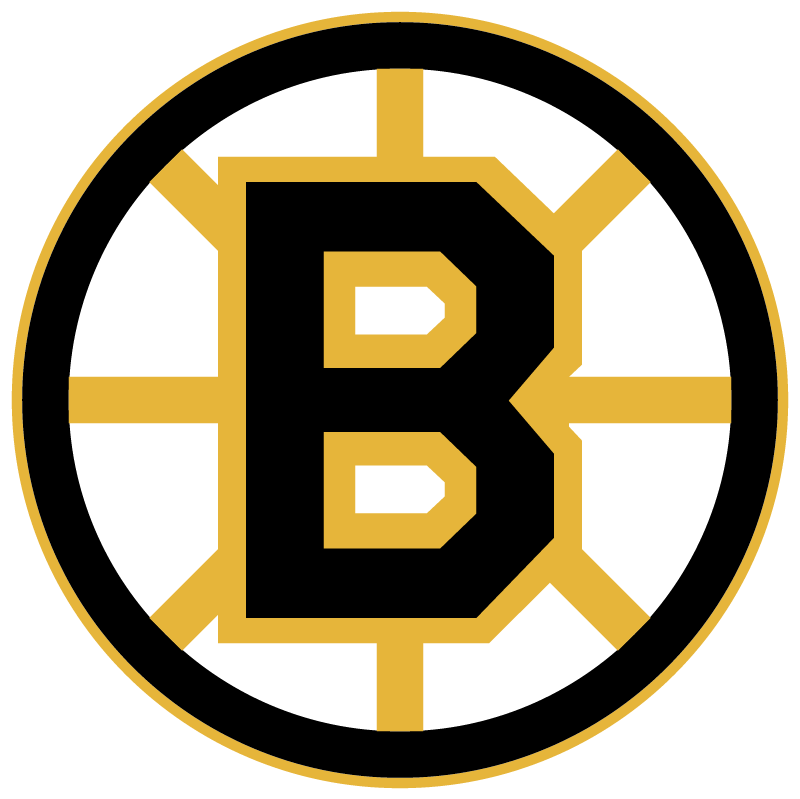 Boston Bruins 20497 vector