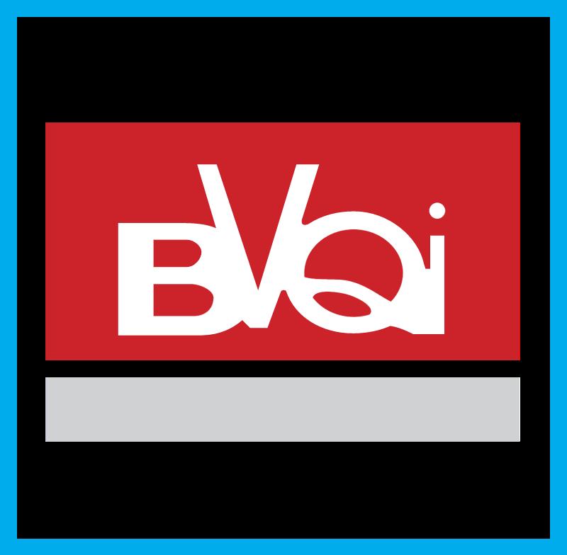 BVQI logo vector