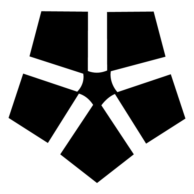 Associacao Portelense de Futebol de Tenente Portela RS vector