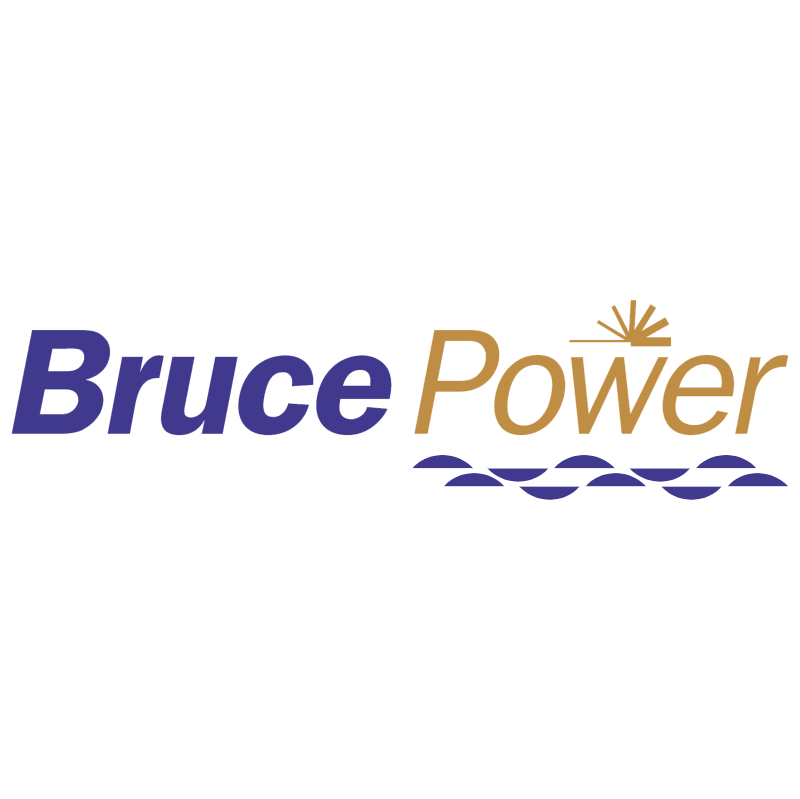 Bruce Power 21650 vector