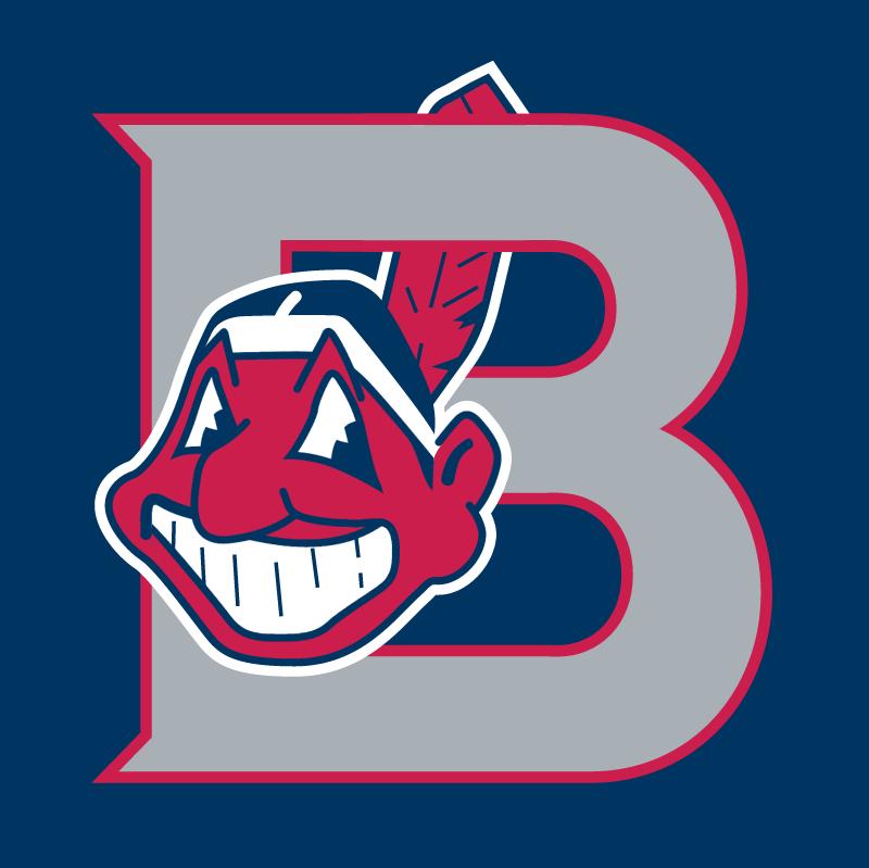 Burlington Indians 58784 vector