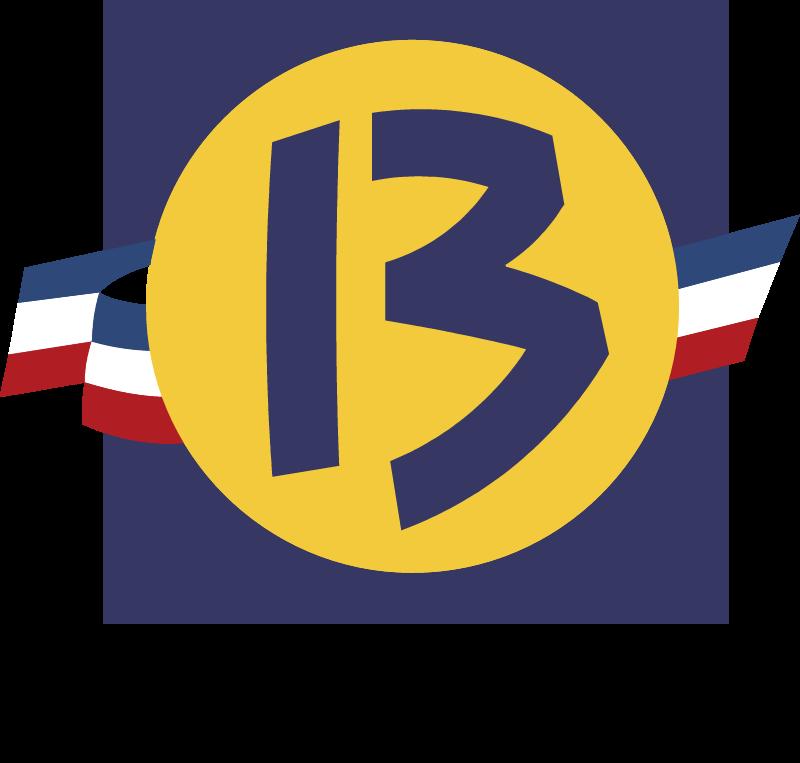 CGBR logo vector