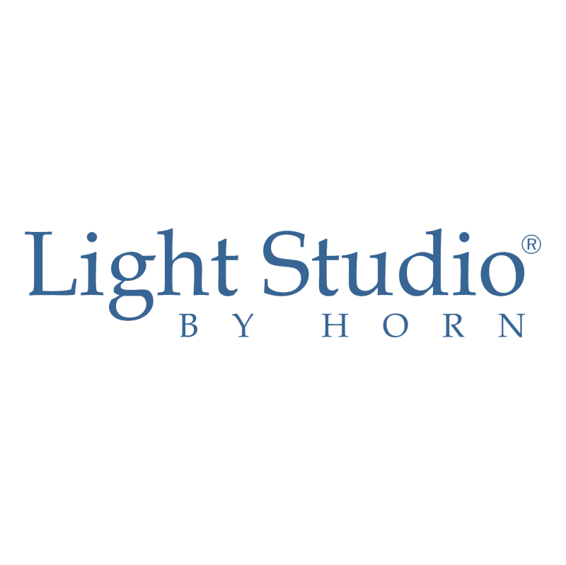 Light Studio by Horn vector