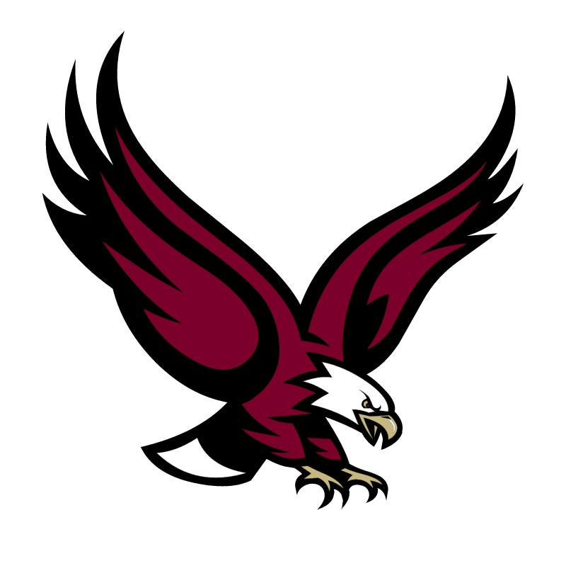 Boston College Eagles 76004 vector