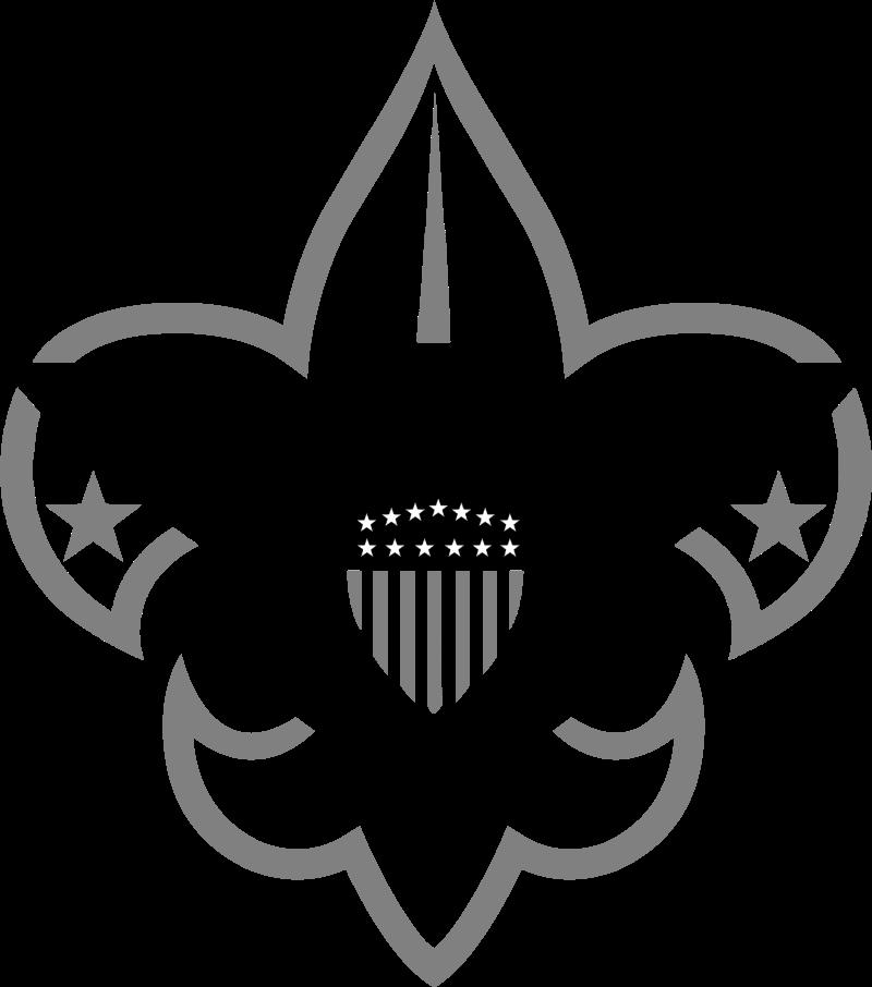 Boy Scouts 1 vector
