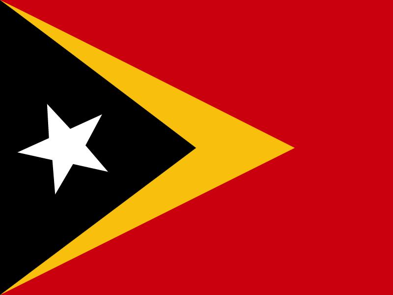 Flag of Timor Leste vector
