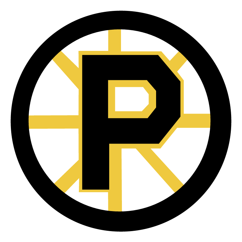 Providence Bruins vector