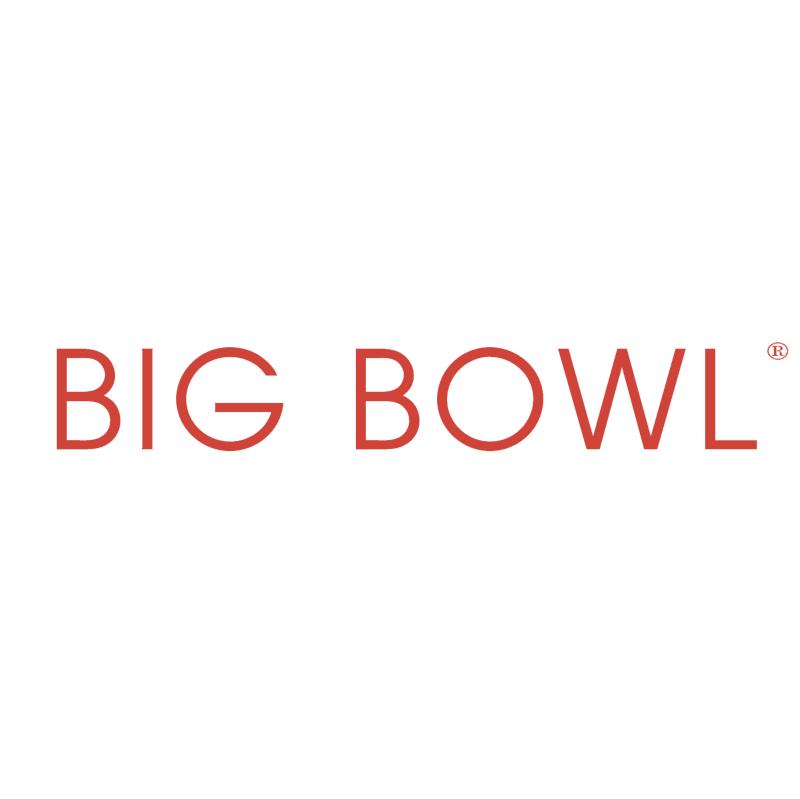 Big Bowl vector
