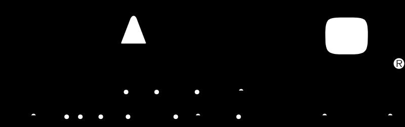 Casio vector