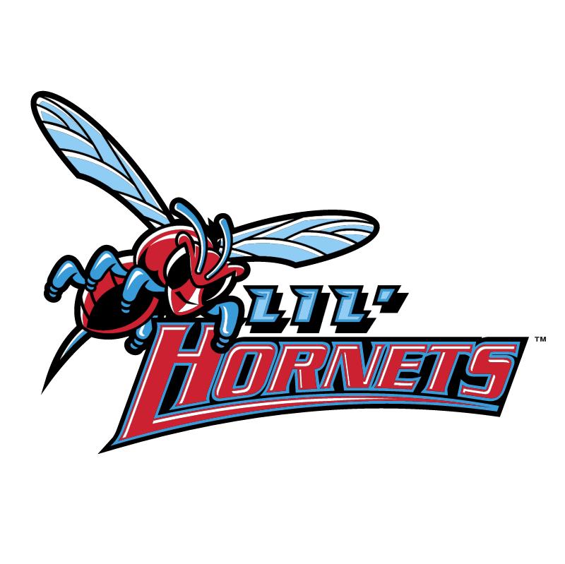 Delaware State Hornets vector