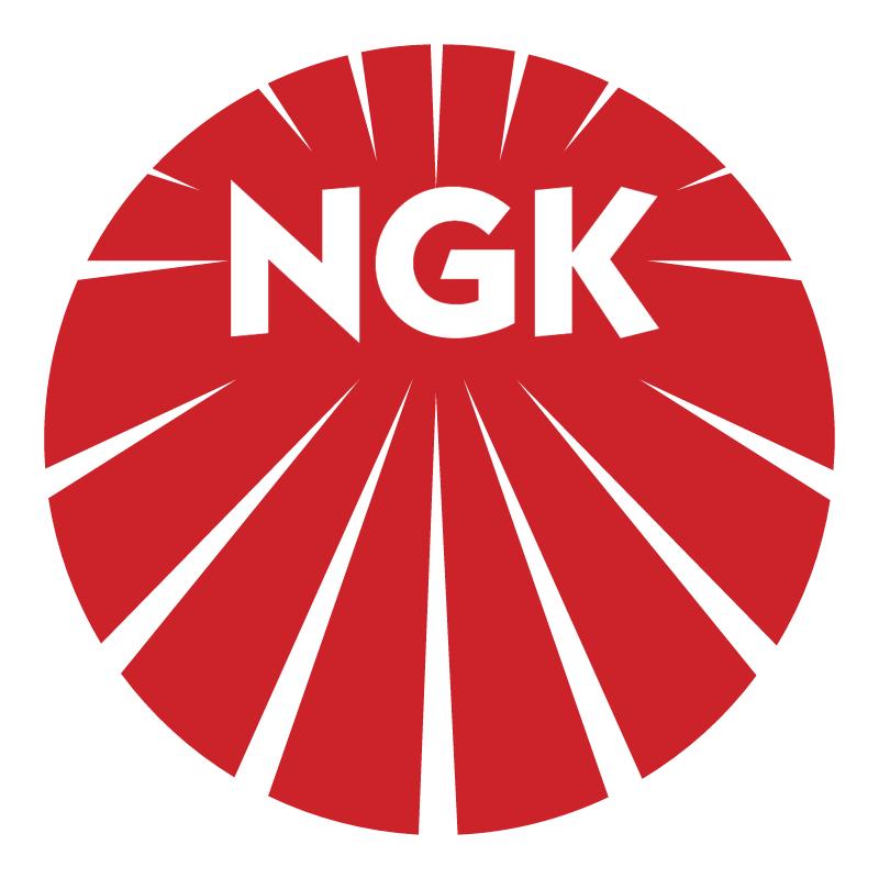 NGK vector