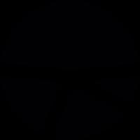 Pie chart circle vector