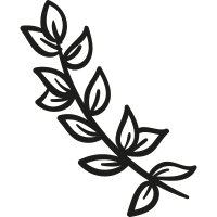 Leaves Branch vector