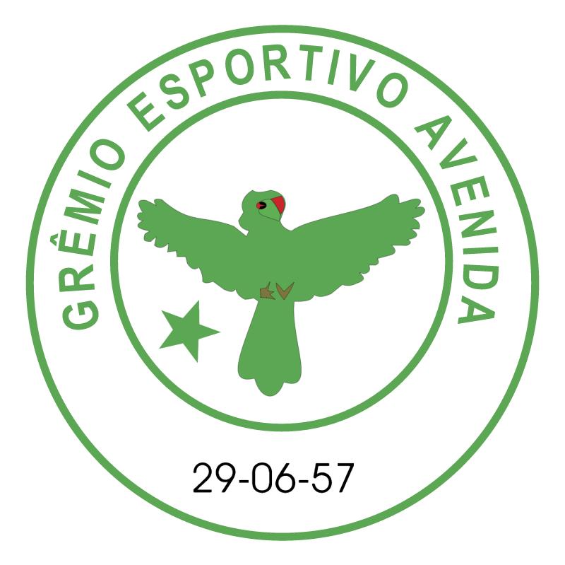 Gremio Esportivo Avenida de Soledade RS vector