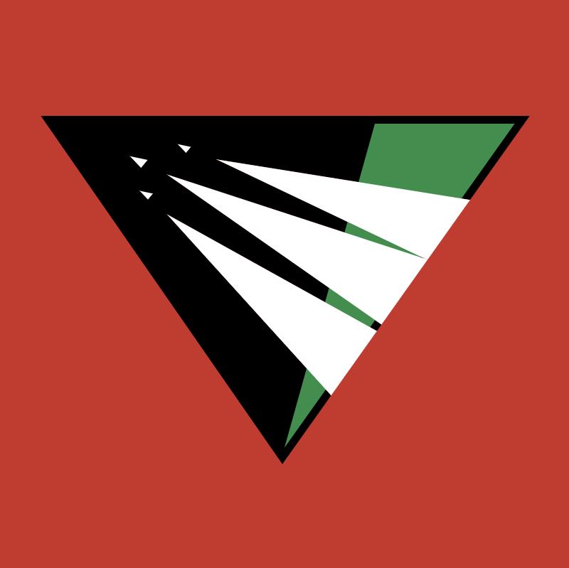 Raliegh Durham Skyhawks vector