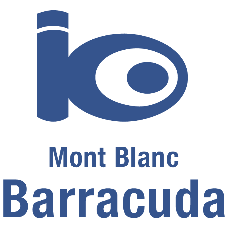 Barracuda 21200 vector