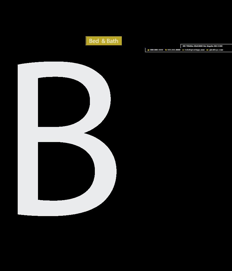 BC 20 LH vector