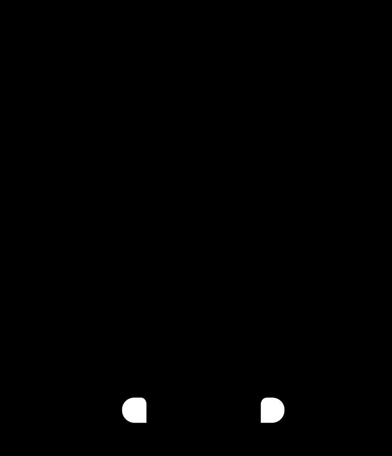 CHAMPLIN vector