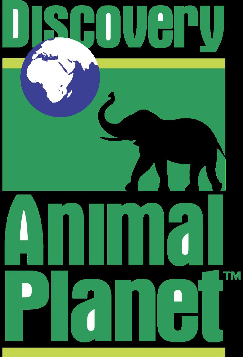 Discovery Animal P1 vector logo
