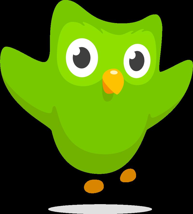 Duolingo symbol icon vector