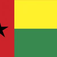 guineabi vector
