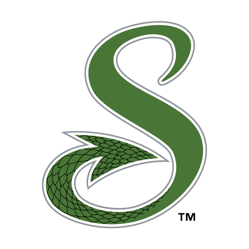Shreveport Swamp Dragons vector