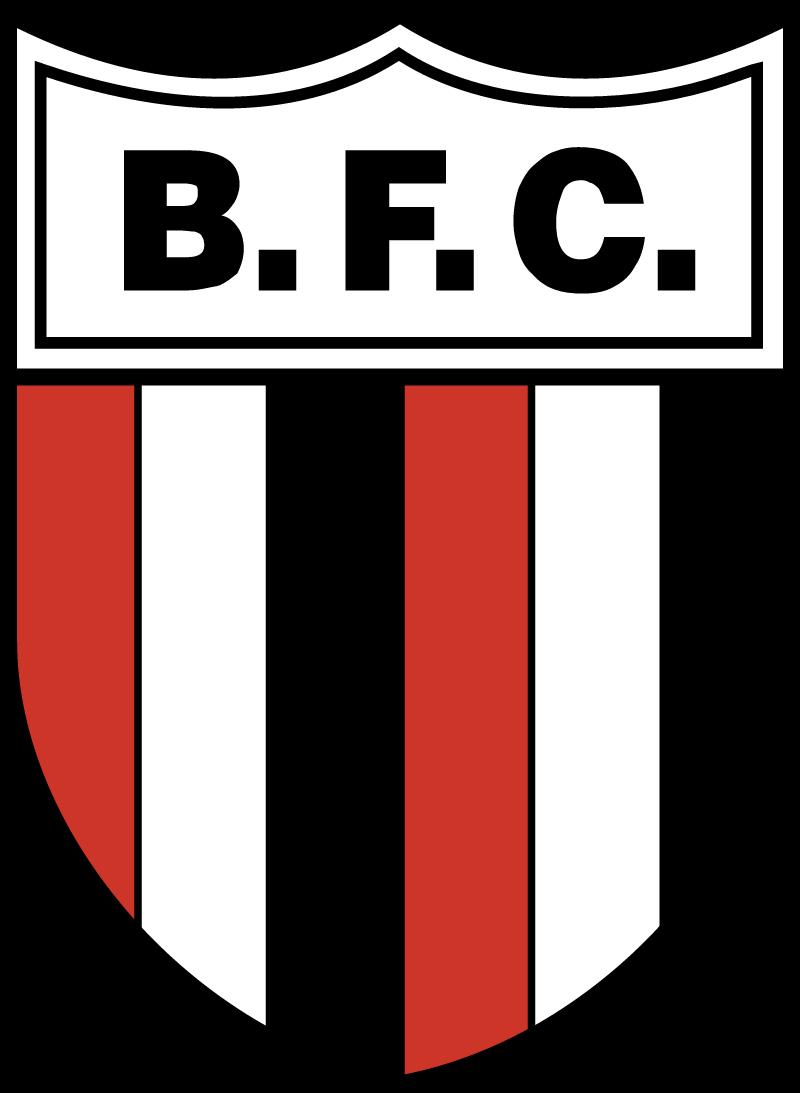 botafogo fc vector